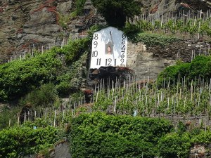 A sundial in a hillside vineyard.  It was an hour off; must not have a daylight savings setting!