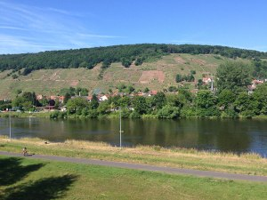 The view from our hotel balcony in Klingenberg