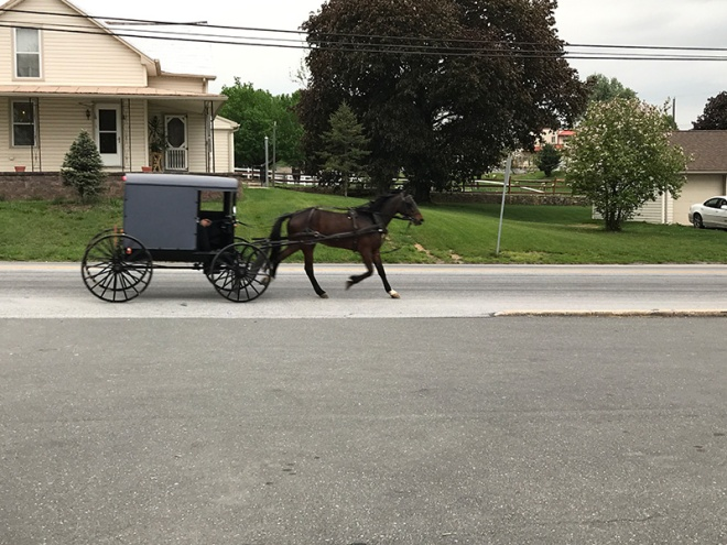 Horse & Buggy - Lancaster PA